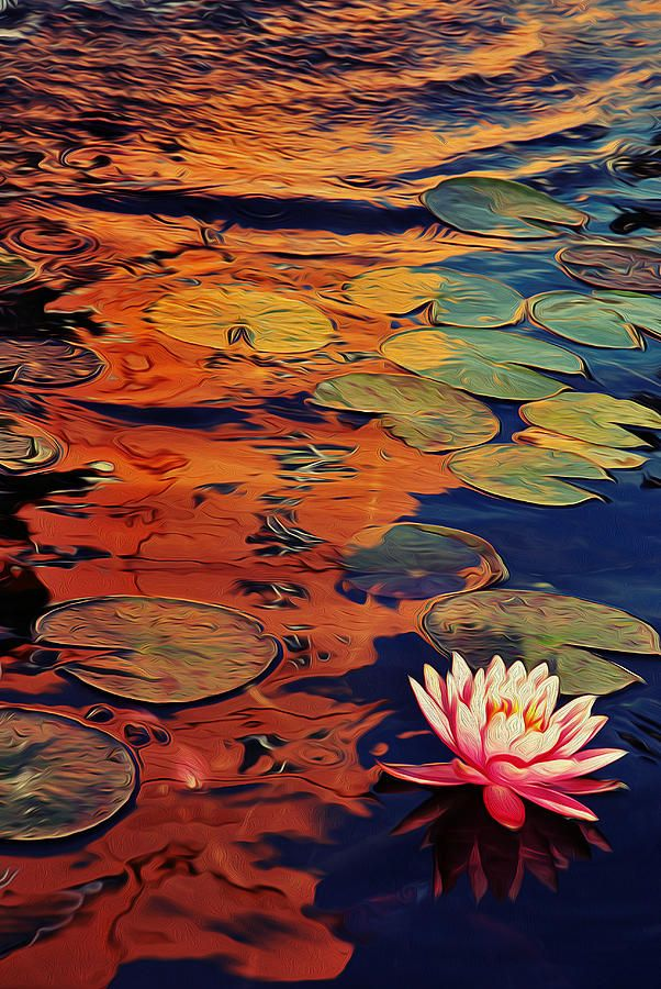 Water Lilies Canvas Print / Canvas Art by Mery Li
