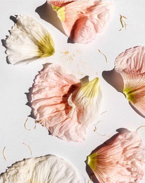 Beauty 🌹 source: pinterest #tgbclothing #sustainablefashion