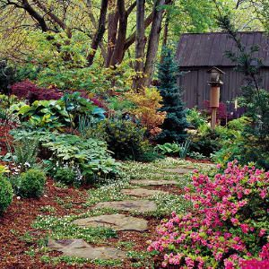Cottage Gardening for Everyone