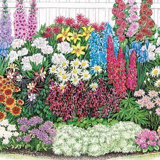 ENDLESS BLOOM PERENNIAL GARDEN;  Even experienced gardeners can find it challeng...