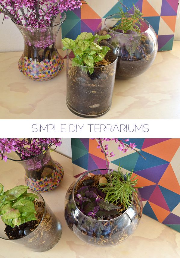 Simple DIY Terrarium Tutorial