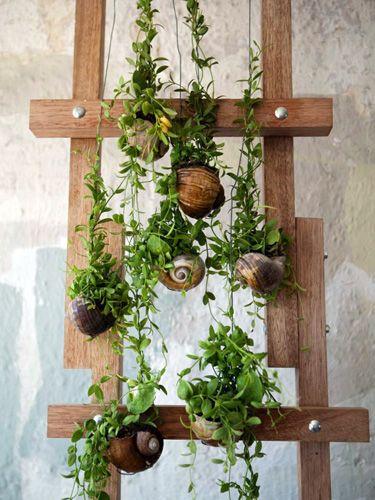Top 10 Gardening Trends for 2014