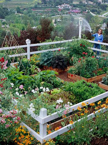 Vegetable Gardens That Look Great