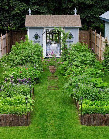 Veggie garden. this will do it.