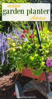 Unique Garden Planter Ideas