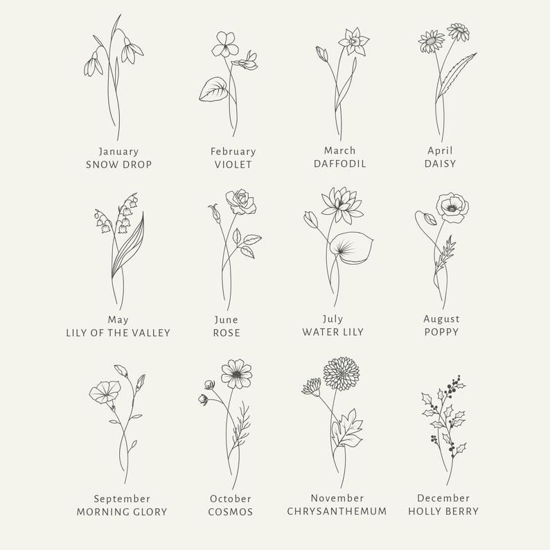 Birth Month Flowers SVG Clipart - Floral Svg Bundle - Botanical Clipart PNG - Summer Svg Files - Hand Drawn Clipart