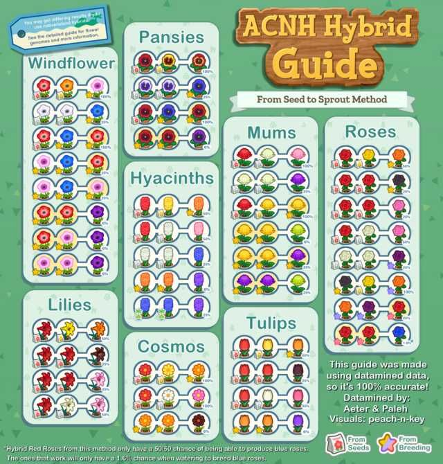 ACNH Hybrid Guide: Full Collection