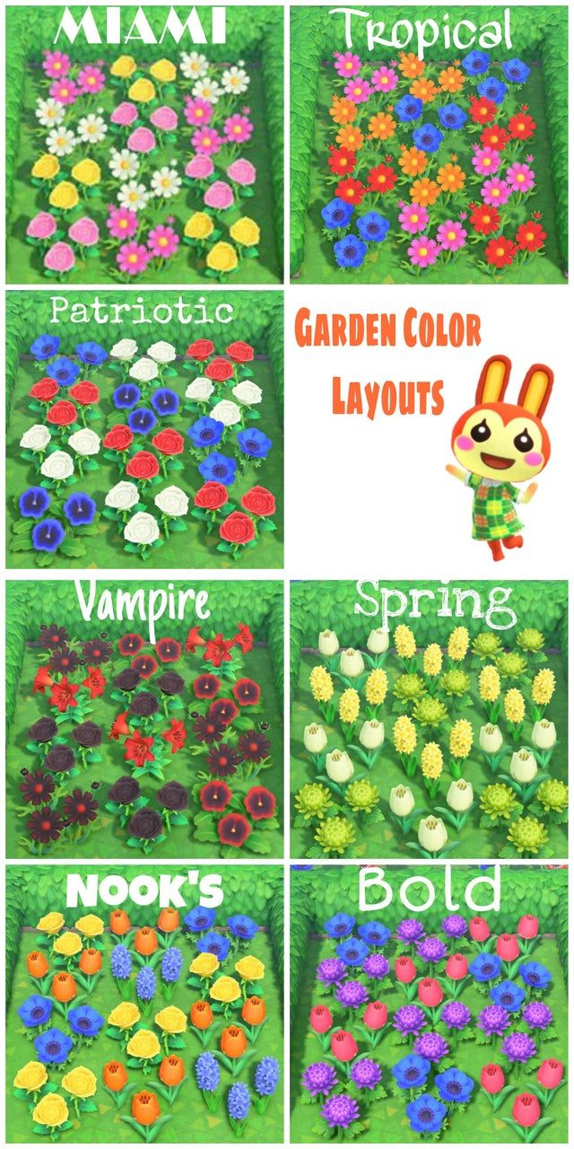 Color inspiration for your garden projects