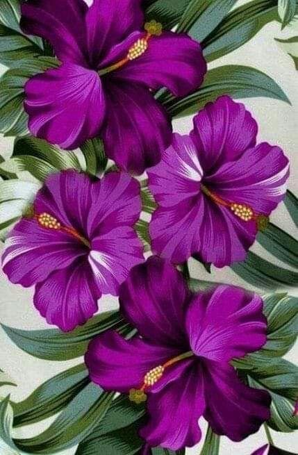 Purple flowers varieties and types