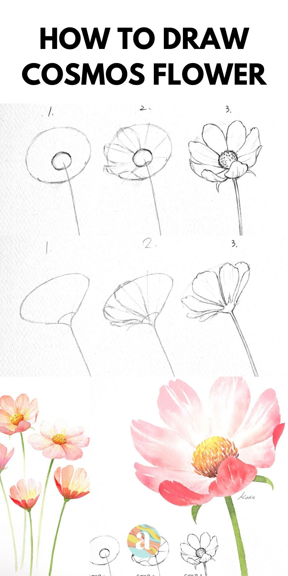 How to draw Cosmos Flower