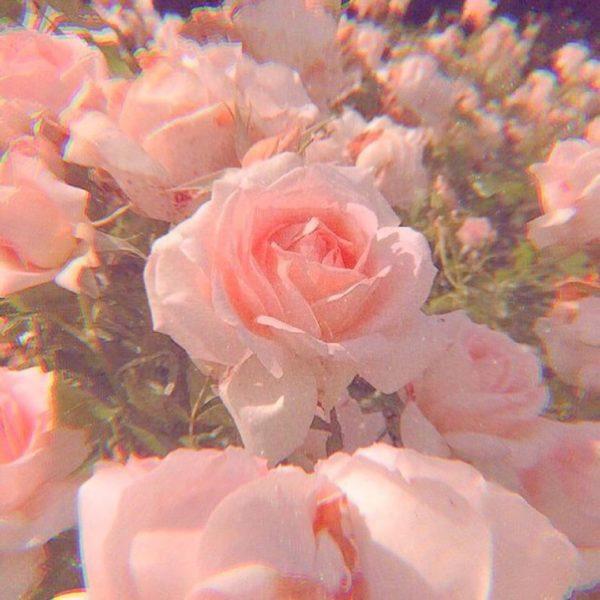 Fotos Pink Aesthetic para un perfil menos aburrido