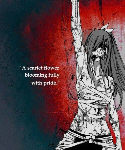 Anime: Fairy Tail Character: Erza Scarlet